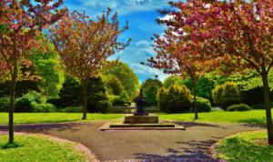 Herbert Park (Ballsbridge, Dublin 4)